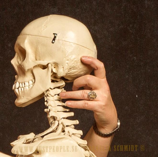 hand holding skeleton